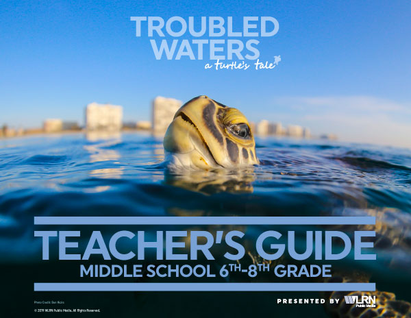 Turtle's Tale Teacher's Guide